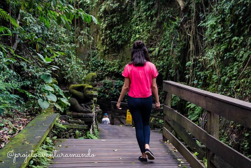 Trilhas ao longo da Floresta dos Macacos - Monkey Forest - Ubud - Indonesia