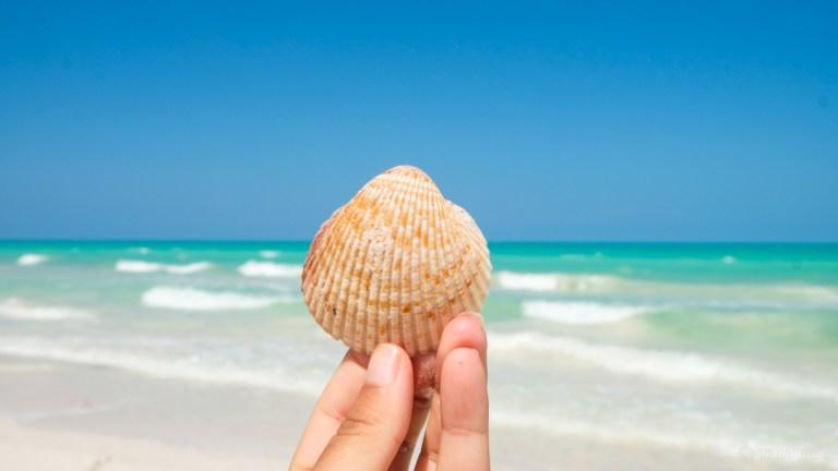 Viagem Cancun 2021
