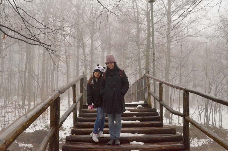 Floresta congelada em Plitvika lake