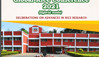 Global Rice Conference