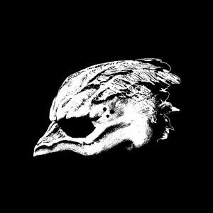 Recensie Legend of the Seagullmen debuut album