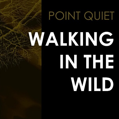 Point Quiet-Walking in the Wild