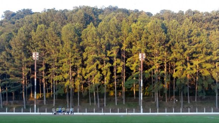 Uitgestrekte wouden rondom het Estádio Municipal Eusébio Roque Busanello