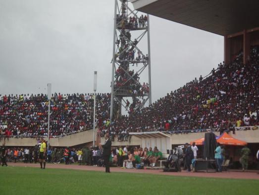 Tom Saintfiet bondscoach van Gambia