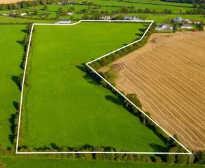 A young couple won the day when they paid €235,000 for this 23ac roadside holding near Athboy, Co Meath.