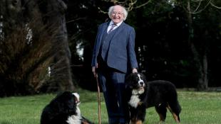 Misneach – New puppy of President Michael D Higgins