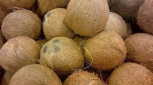Over 500,000 coconuts per month to the market through Sathosa