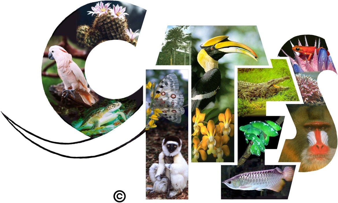 Sri Lanka announces dates to host 18th Meeting of Conference of Parties to the CITES in 2019