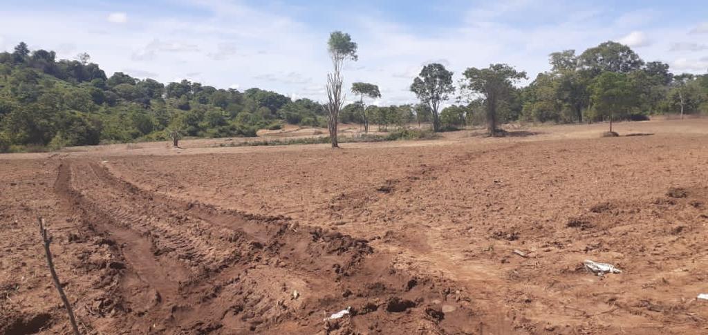 """Stop massive forest destruction in Mahaoya area"" CEJ sends LOD"
