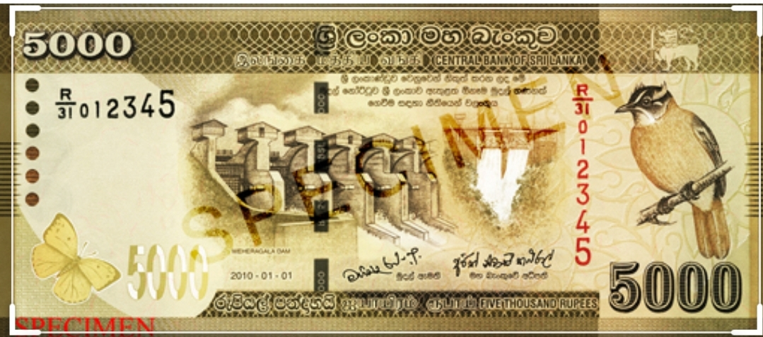 Rs 5000 to be distributed till Monday