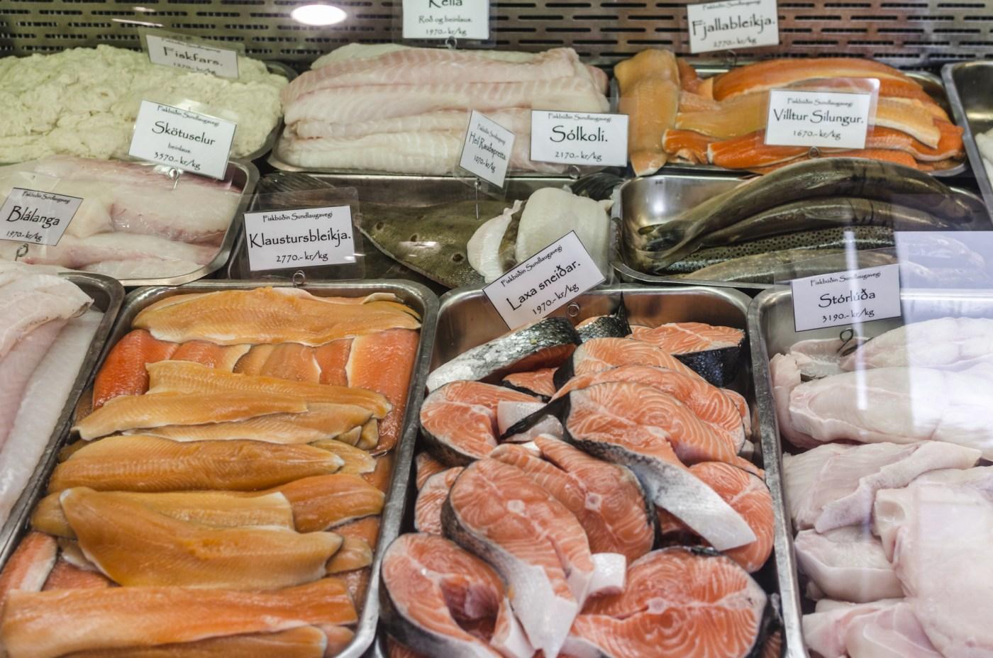 Reykjavik fish store