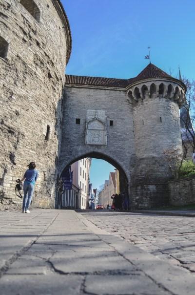 Estonia: Tallinn Old Town
