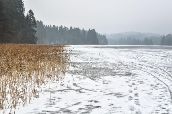 Winter scenery of Estonia