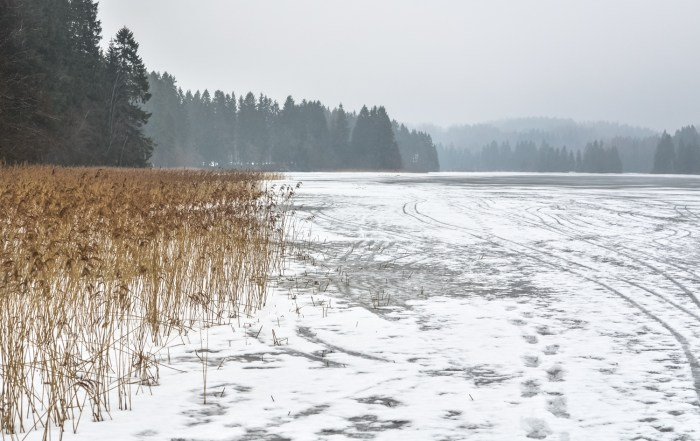 Winter scenery of Estonia