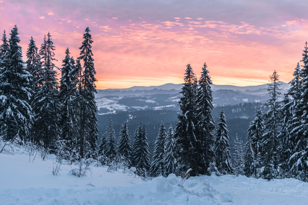 Ukraine, Carpathian mountains, Winter, Eastern Europe