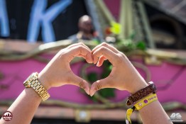 finals-tomorrowland_day1-117-copy.jpg?fit=1024%2C682&ssl=1