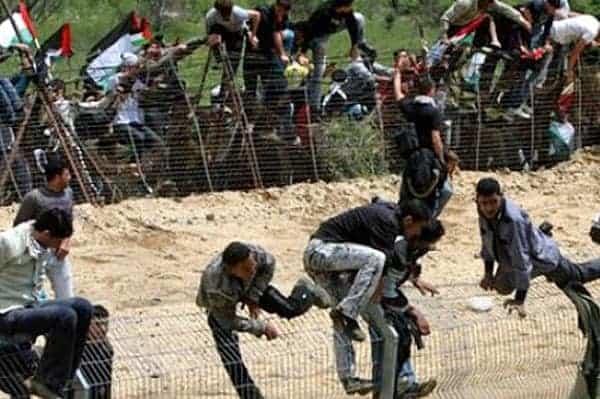 illegals 1