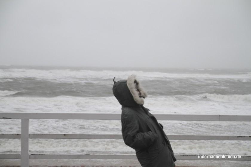 Steffi im Sturm