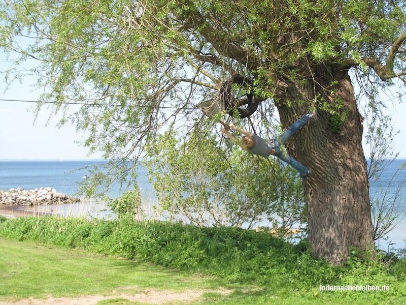 SeilbahnNorgardholz