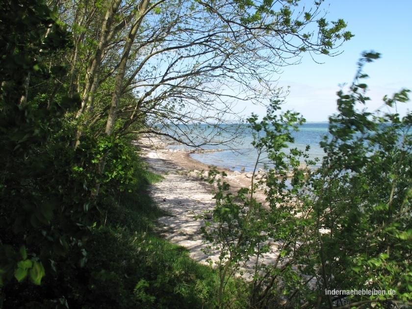 Strand Flensburger Foerde