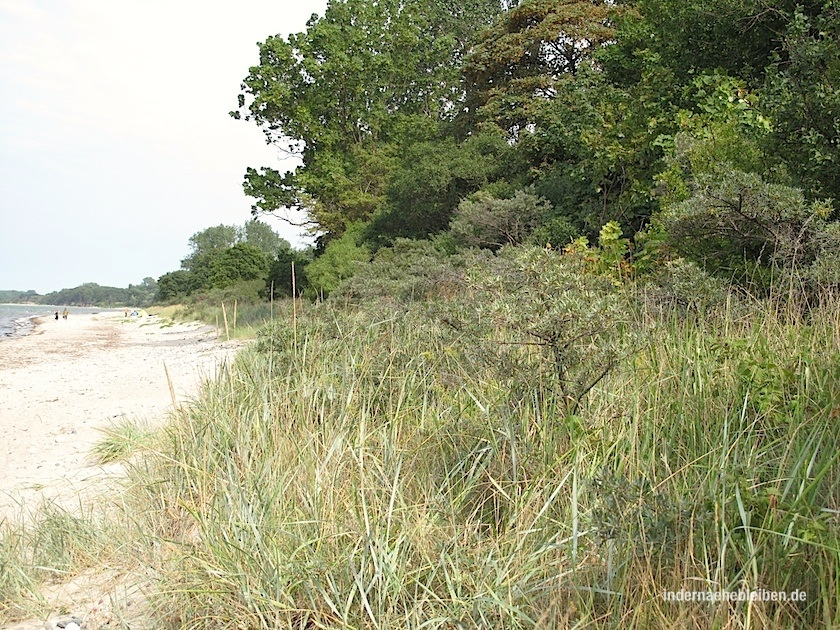 Strand beim Priwall