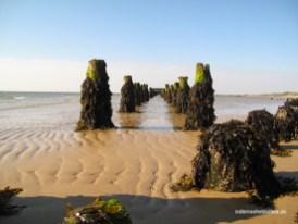 Ostanleger Wangerooge 3