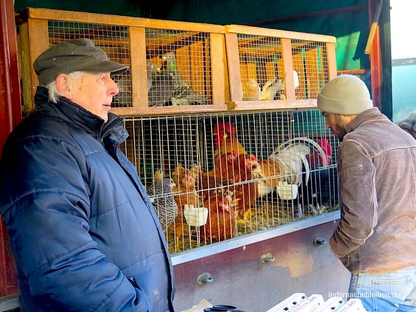 verkaufe Huhn