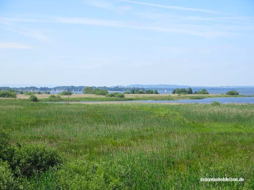 Ostufer Steinhuder Meer