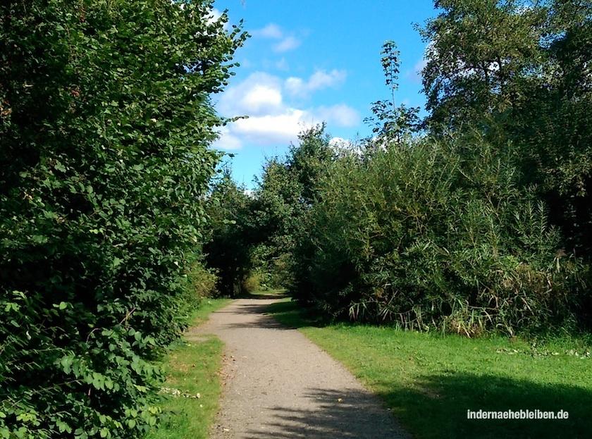 Lise Meitner Park