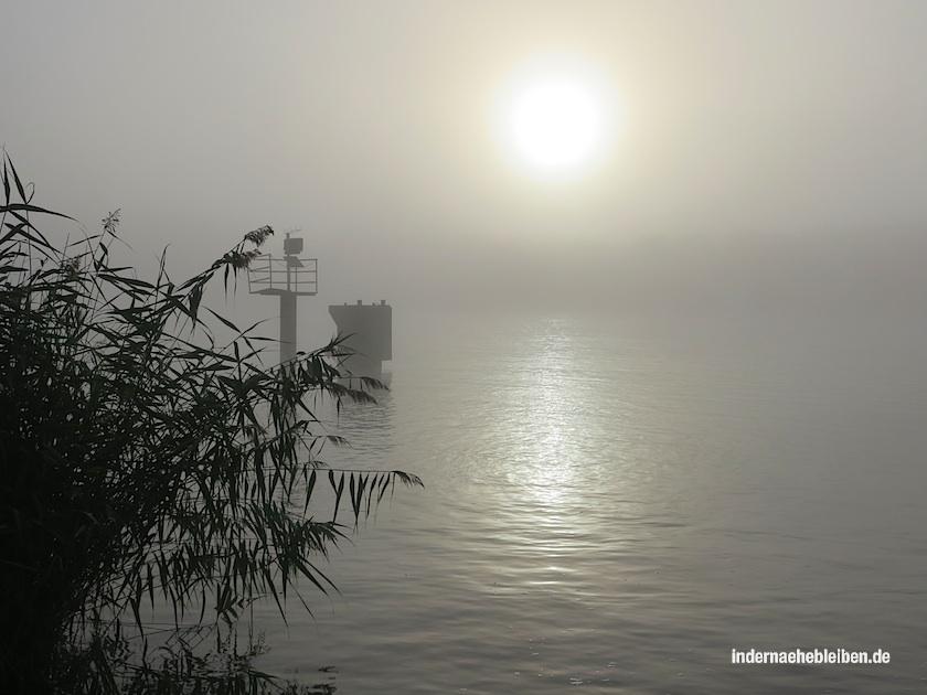 nebel am kanal