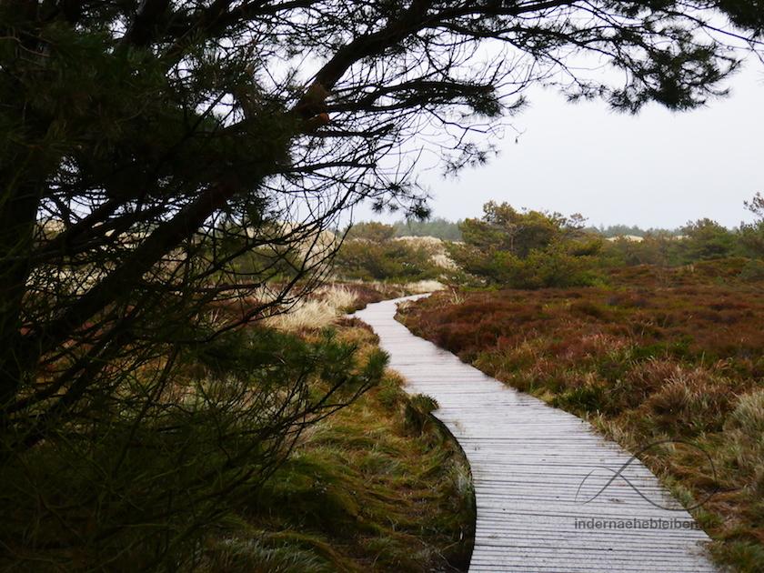 Bohlenweg