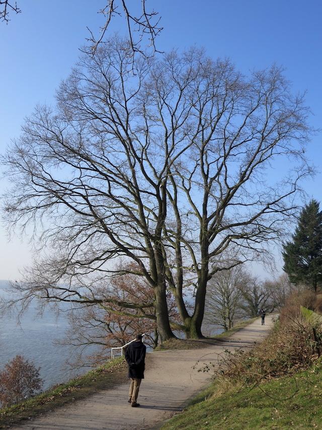 Elbhoehenweg