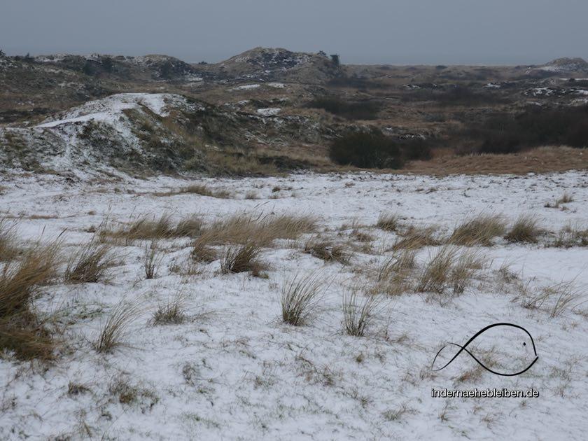 Duenen im Schnee