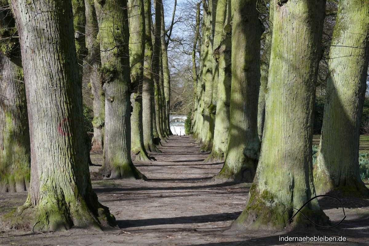 Hamburg Hirschpark