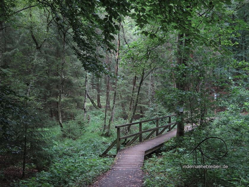 Wald Moelln