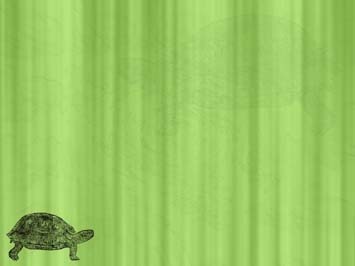 Tortoise 03 Powerpoint Templates