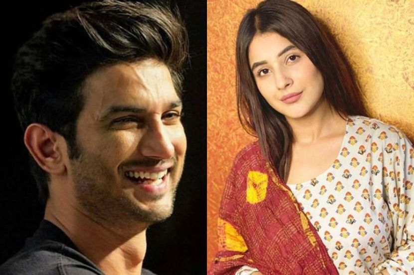 Bigg Boss 13 Fame Shehnaaz Gill Reacts on Sushant Singh Rajput Death, Says 'I Was Hurt, Shocked And Disheartened' 1