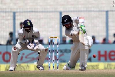 cricket21502