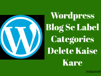wordpress blog se label category delete kaise kare