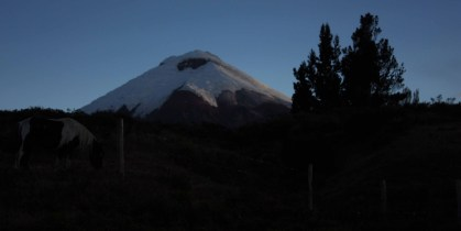 Cotopaxi at sunset.