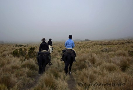 Riding through the clouds in the foothills of Antisana (5704m) whilst a thunderstorm rolled beneath us.