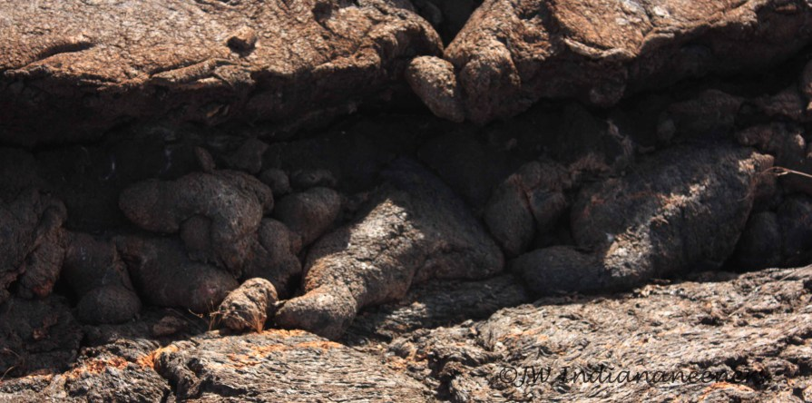 Lava folds.........volacanic past of Galapagos Islands.
