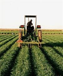 Farmers IB