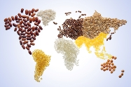 Team highlights ways to address global food system challenges-indianbureaucracy