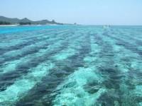 sea_indianbureaucracy