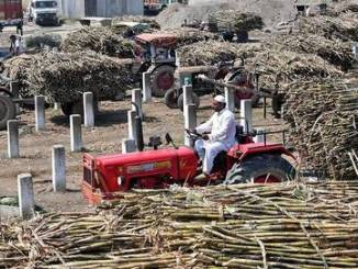 Payment of Dues to Sugarcane-Growing Farmers