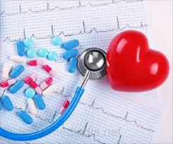 Human hearts evolved for endurance
