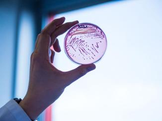 A new antibiotic to combat drug-resistant bacteria is in sight