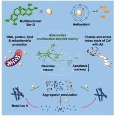 JNCASR Scientists develop a natural product