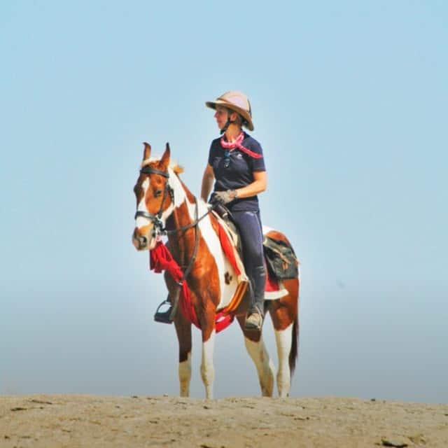 Horse India offering Marwari horse safaris in Rajasthan